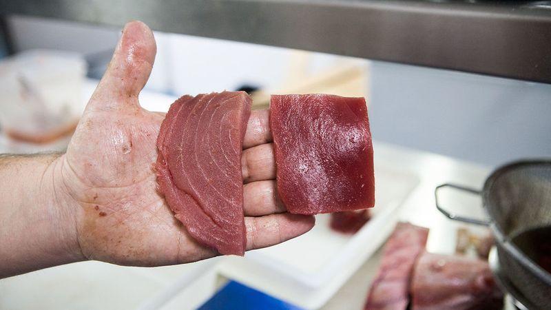 El fraude del atún rojo | La Vieja Bodega